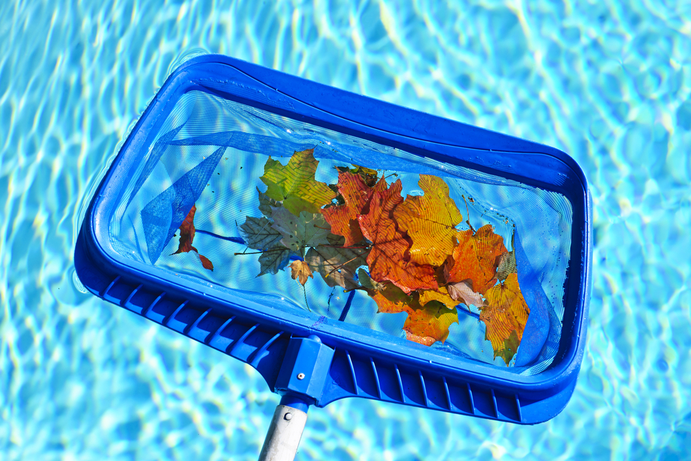 Swimming Pool Cleaning Net : Weekly pool cleaning terry s pools